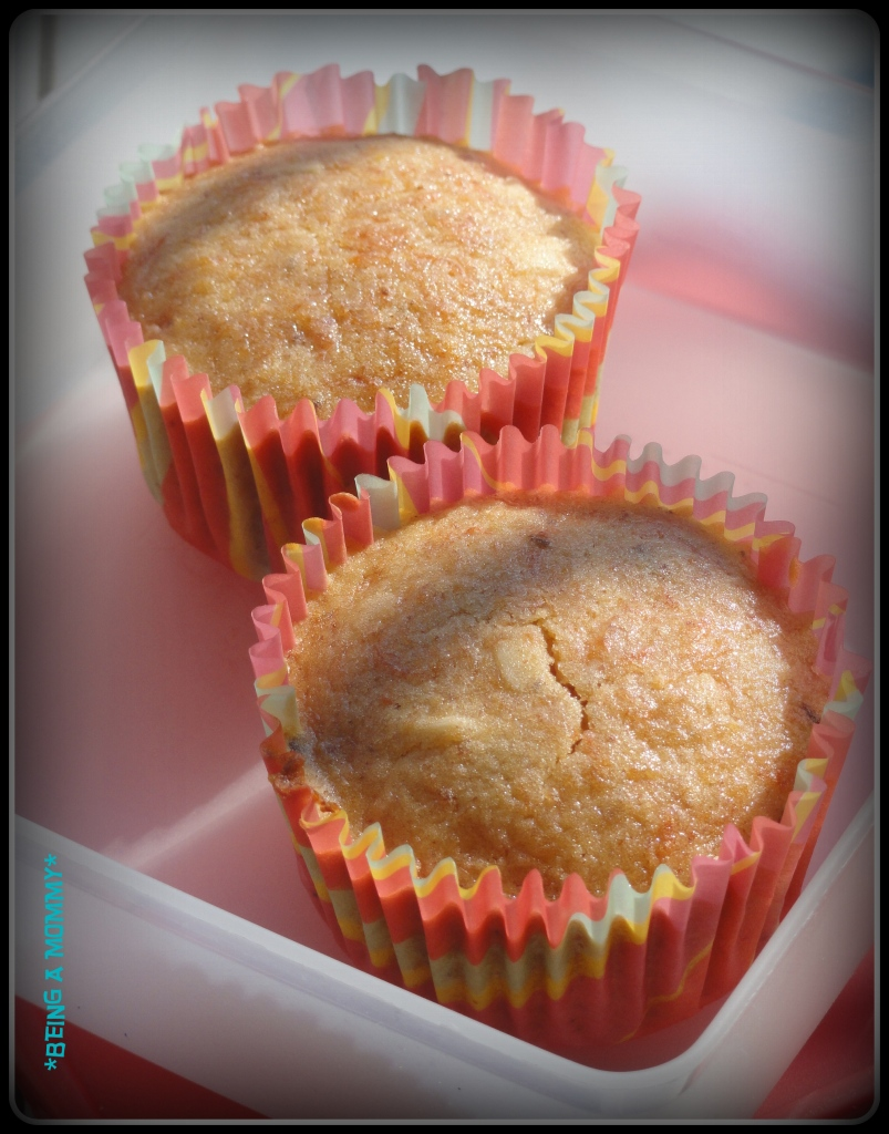 Carrot Almond Cinnamon Muffins 1