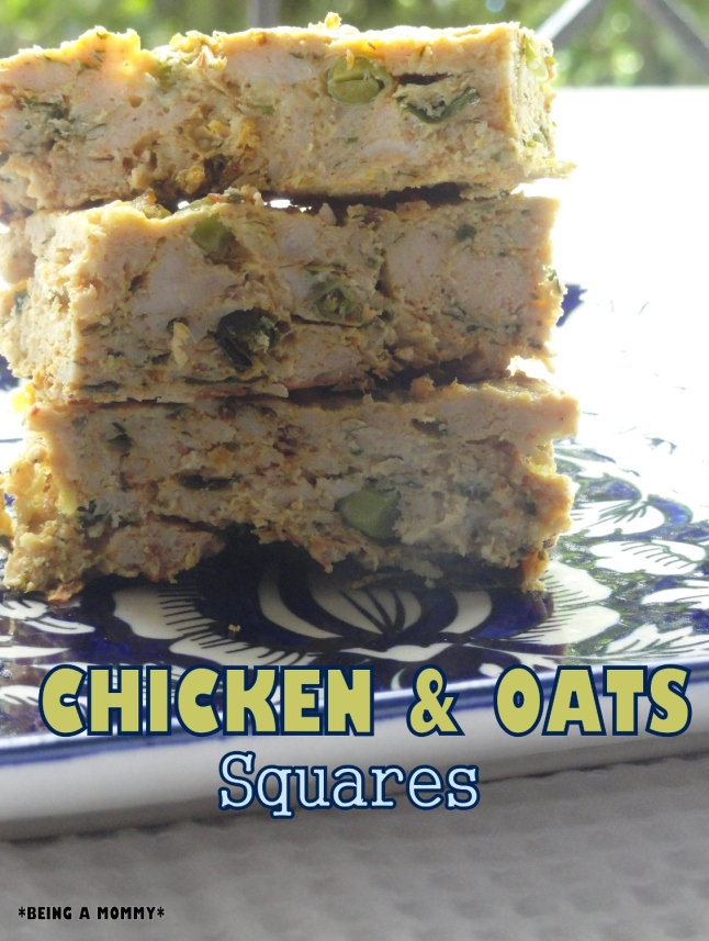 Chicken n Oats Squares